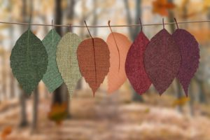 Colorful fall leaves hanging on a string. Fall scene in the background.